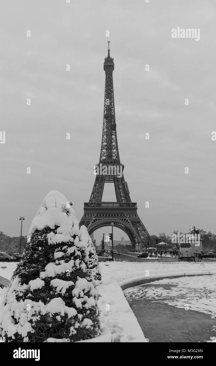 Eiffel tower and pine tree under the snow in winter - Paris - Stock Image