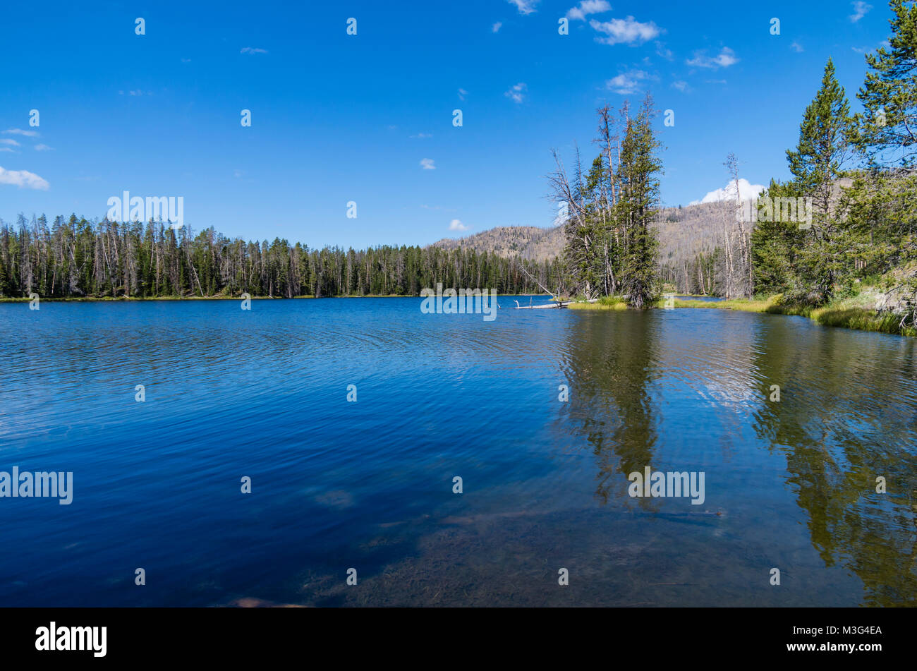 Sylvan Lake is a high elevation lake near Sylvan Pass.  Yellowstone National Park, Wyoming, USA - Stock Image