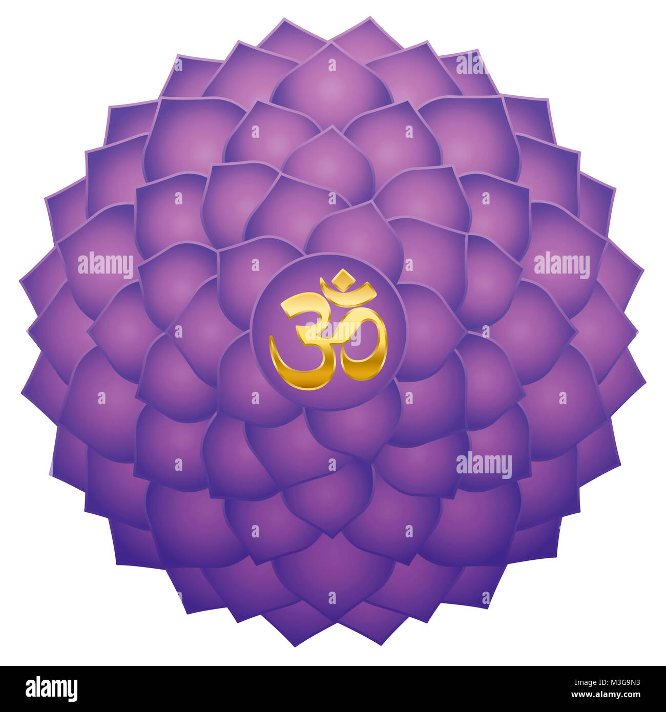 Crown chakra stock photos crown chakra stock images alamy crown chakra with aum or om symbol in the center thousand petaled lotus or purple buycottarizona Image collections