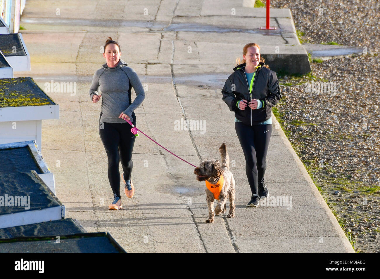 Lyme Regis, Dorset, UK.  11th February 2018.  UK Weather.  Two joggers with their dog on the seafront enjoying the Stock Photo
