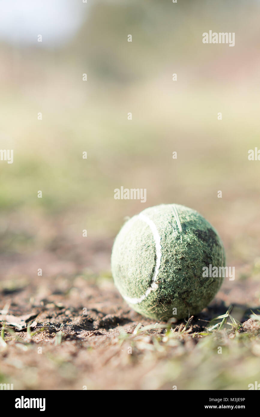 Tight close-up, portrait shot of solitary, lost tennis ball on outside ground with effective soft-focus background. - Stock Image