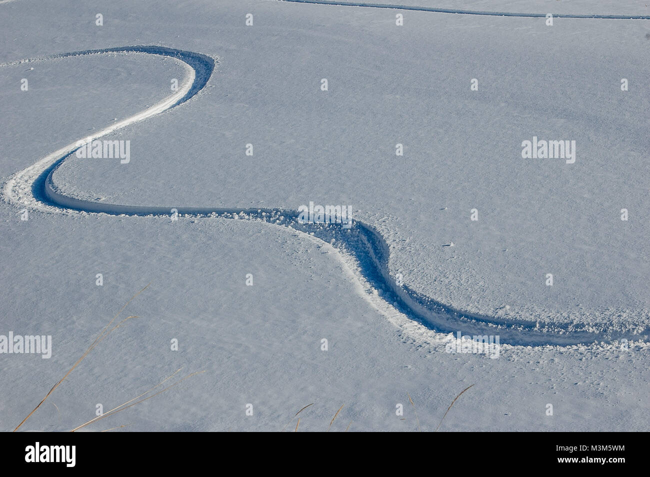 traces of skis in off-piste - Stock Image
