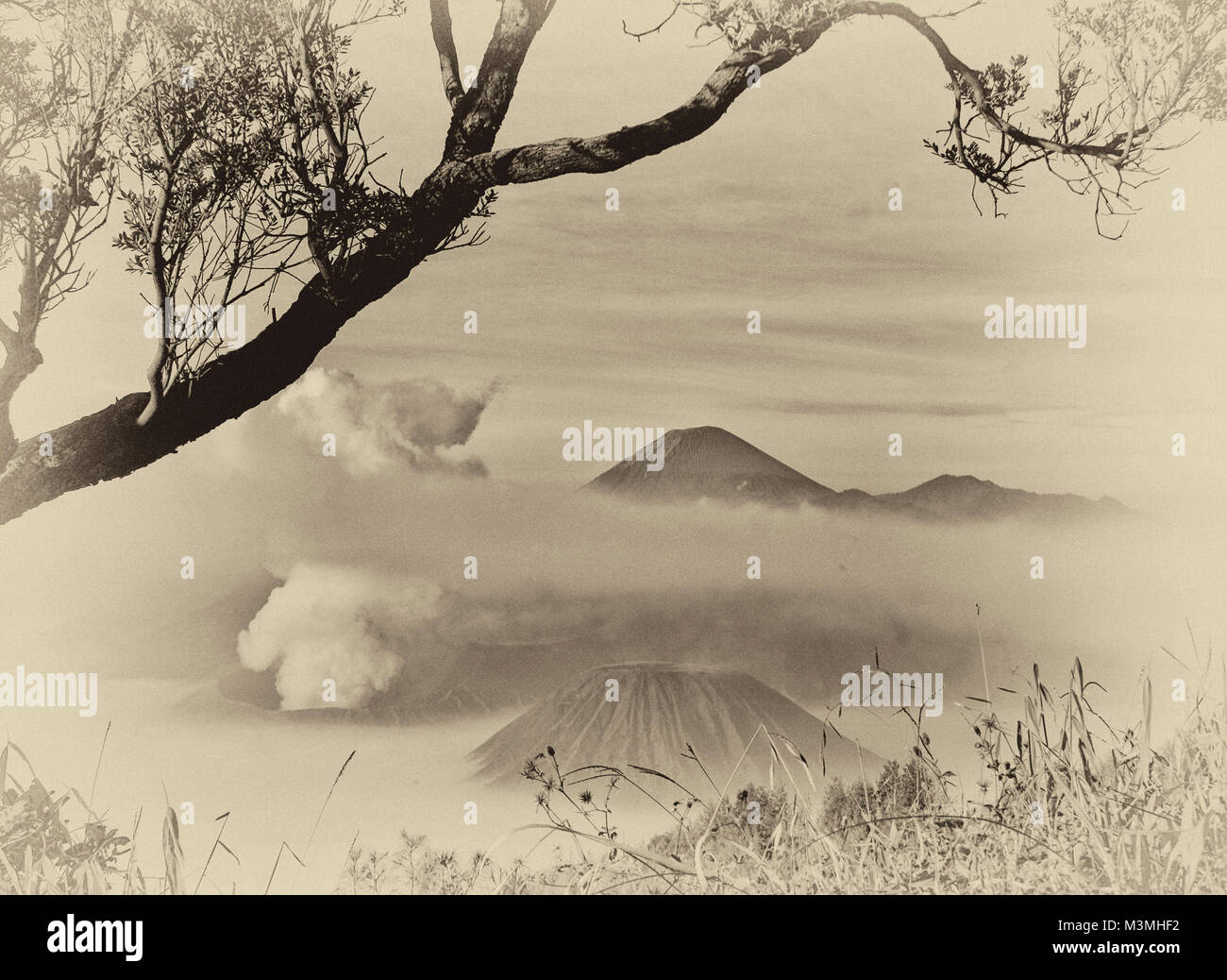Bromo mountain view from Kingkong hill - Stock Image