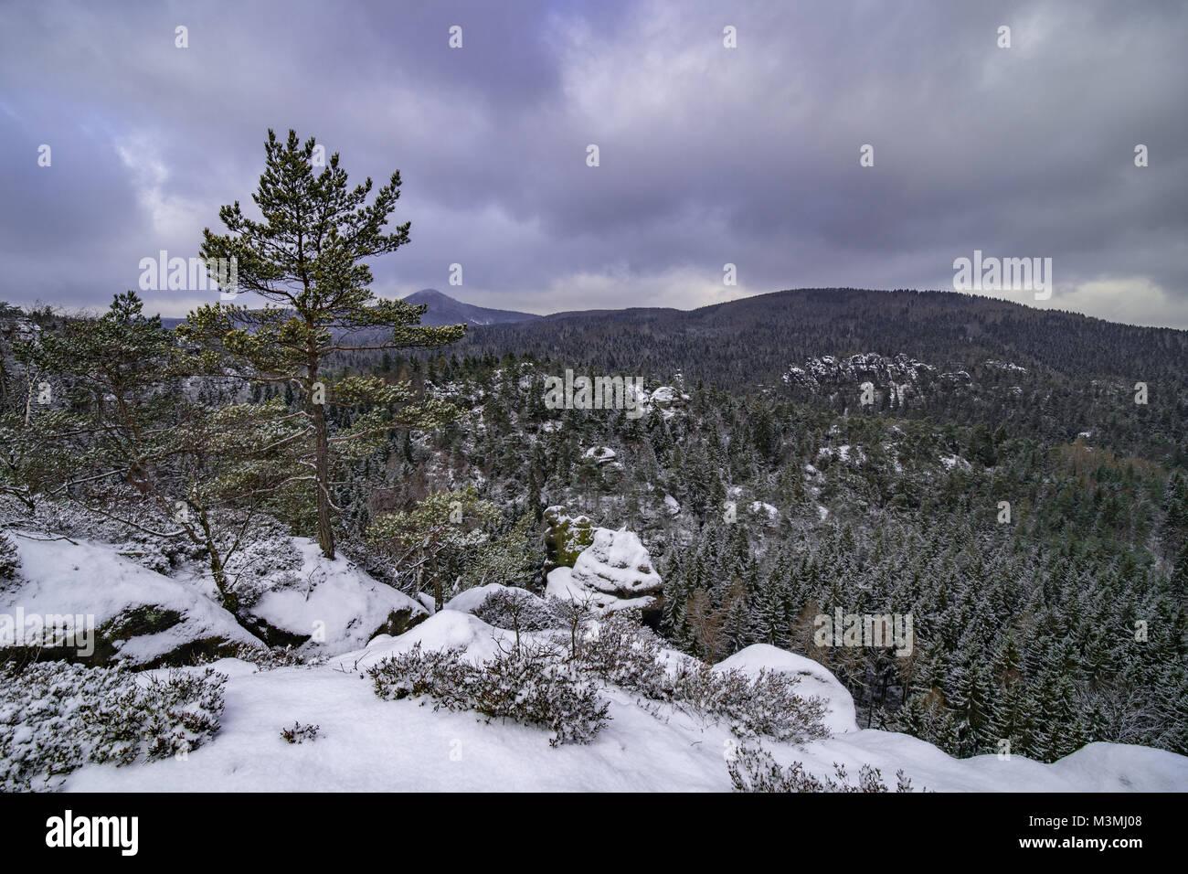 Jonsdorf mountains in saxony Stock Photo