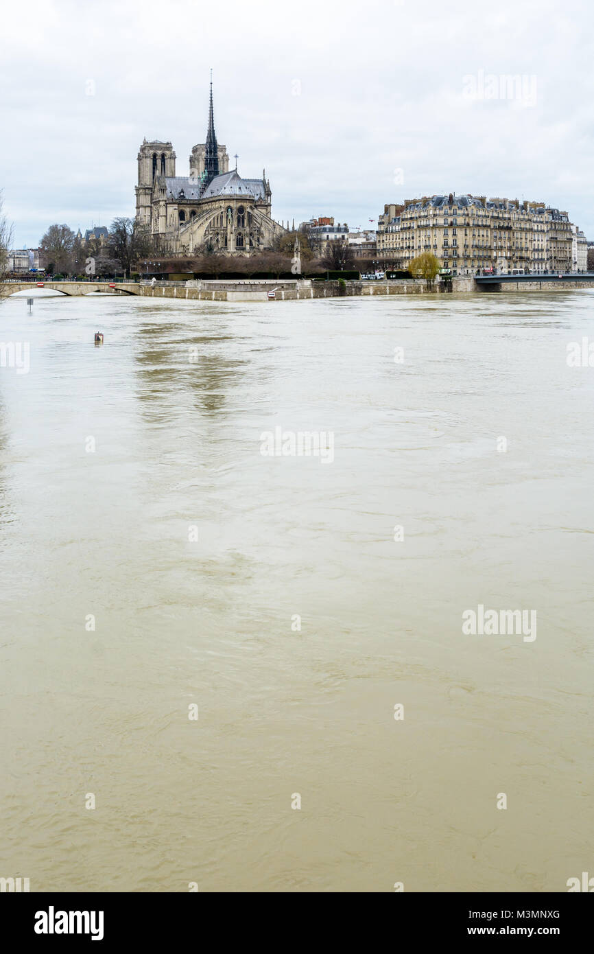 Eastern view of Notre-Dame cathedral and the Cite island in Paris, during the winter flooding episode of January - Stock Image
