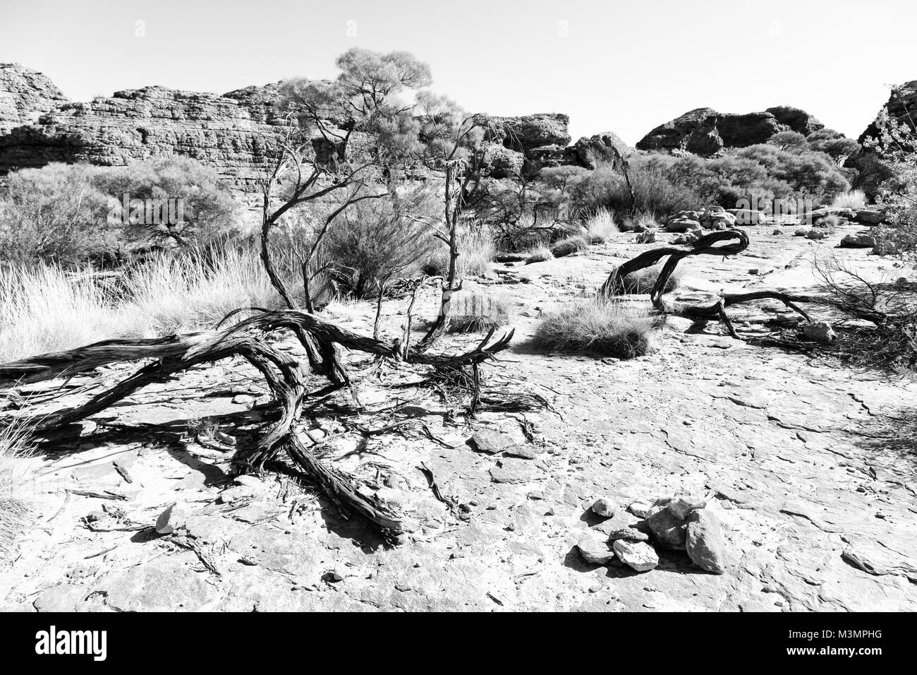 in  australia   the kings canyon nature wild and outback Stock Photo