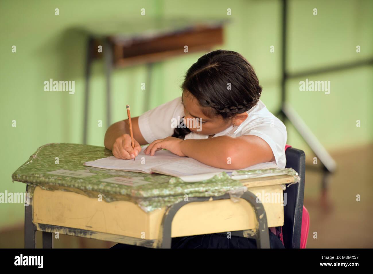 A Maleku schoolgirl studies in her village school in the Maleku indian reservation, Tonjibe, Alajuela Province, - Stock Image