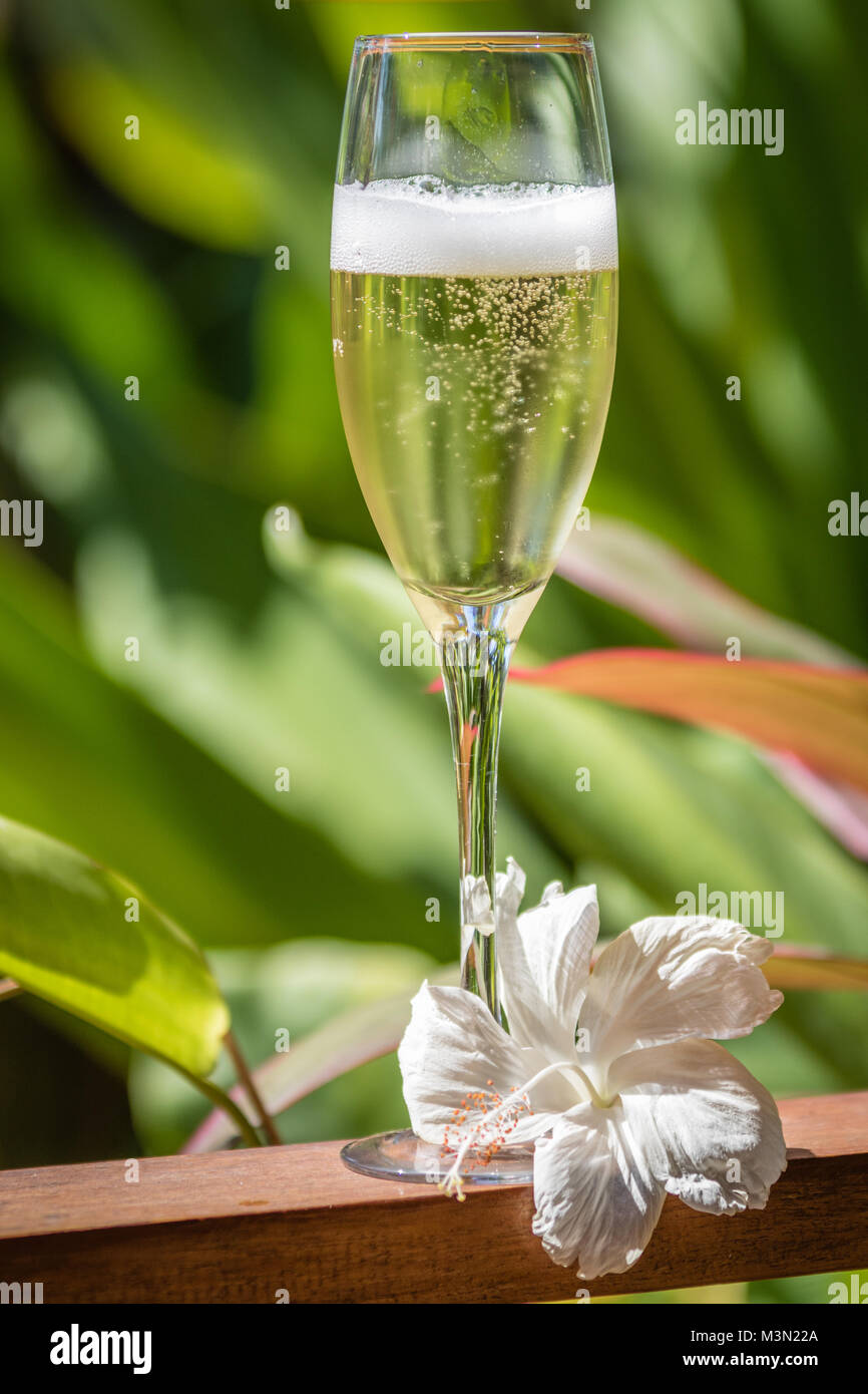 A glass of champagne decorated with a tropical flower standing on a wooden rail. Vertical image. - Stock Image