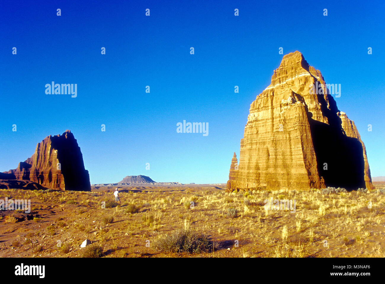 Temple of the Sun (L) and Temple of the Moon (R), monoliths in Cathedral Valley, Capitol Reef National Park, south - Stock Image