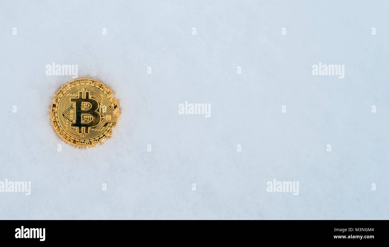 Iced cash currency coin in winter in the snow. Gold bitcoin in the snow alone. On a white background of snow. - Stock Image
