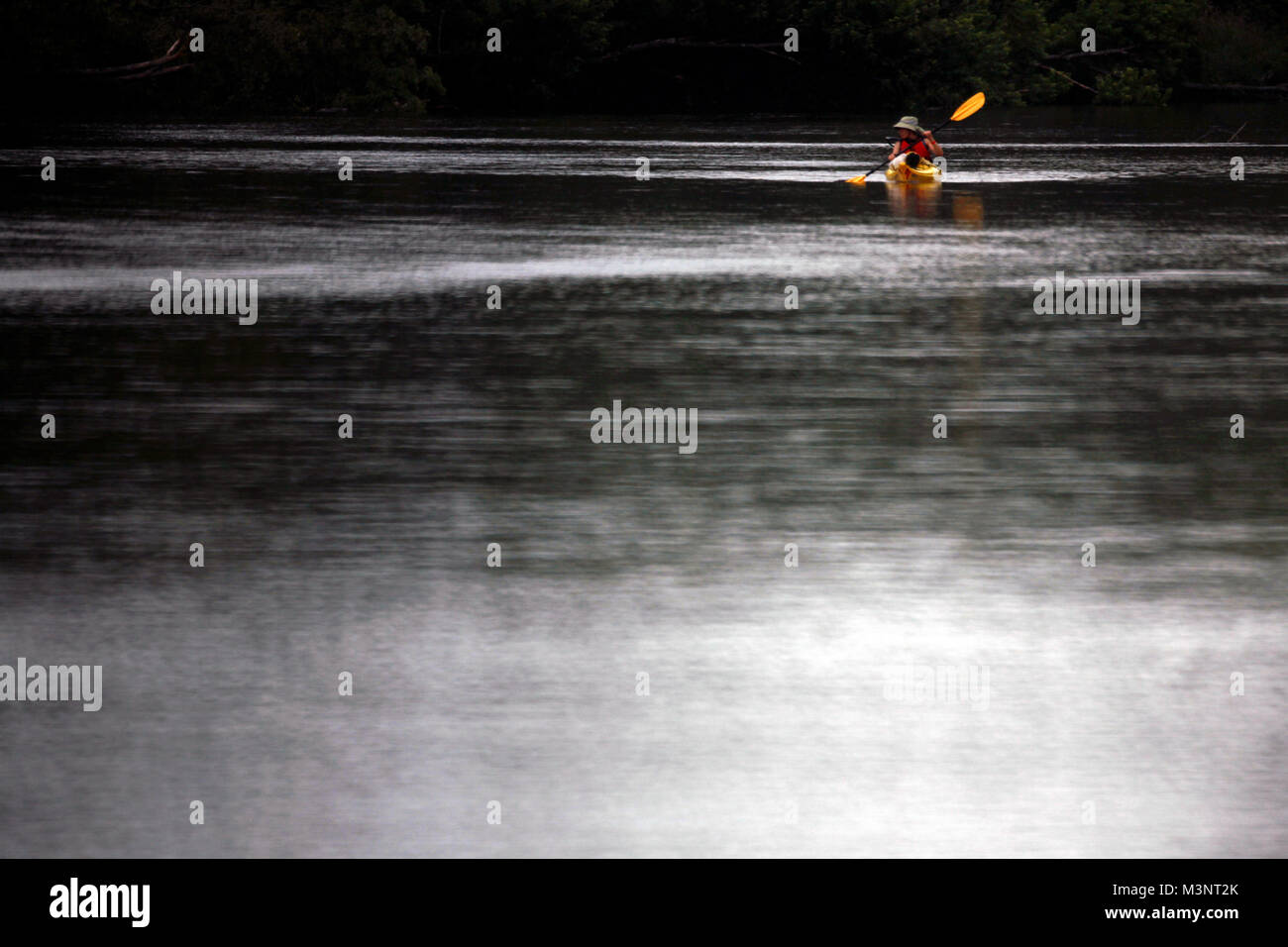 A kayaker on the St. Croix River between Riverside Landing and Danbury.  She was taking part in a 17 day paddle - Stock Image