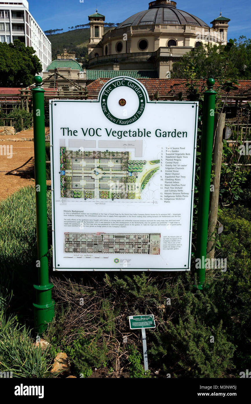 The Dutch-period Vereenigde Oost-Indische Company (VOC) vegetable and herb garden in the Company's Garden in - Stock Image