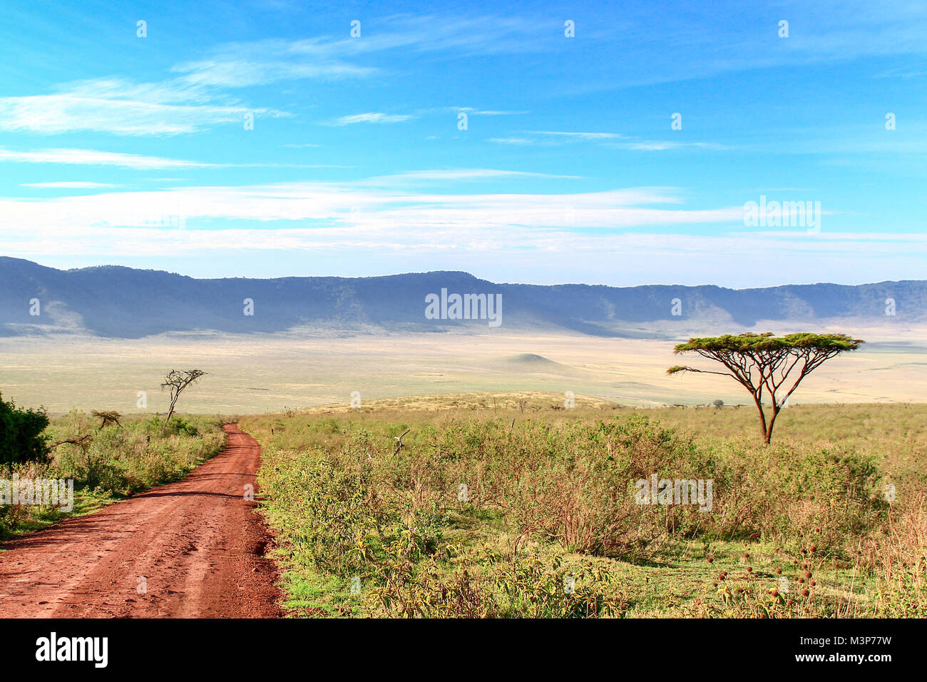 Dirt road  leading to Ngorongoro Crater, Tanzania - Stock Image