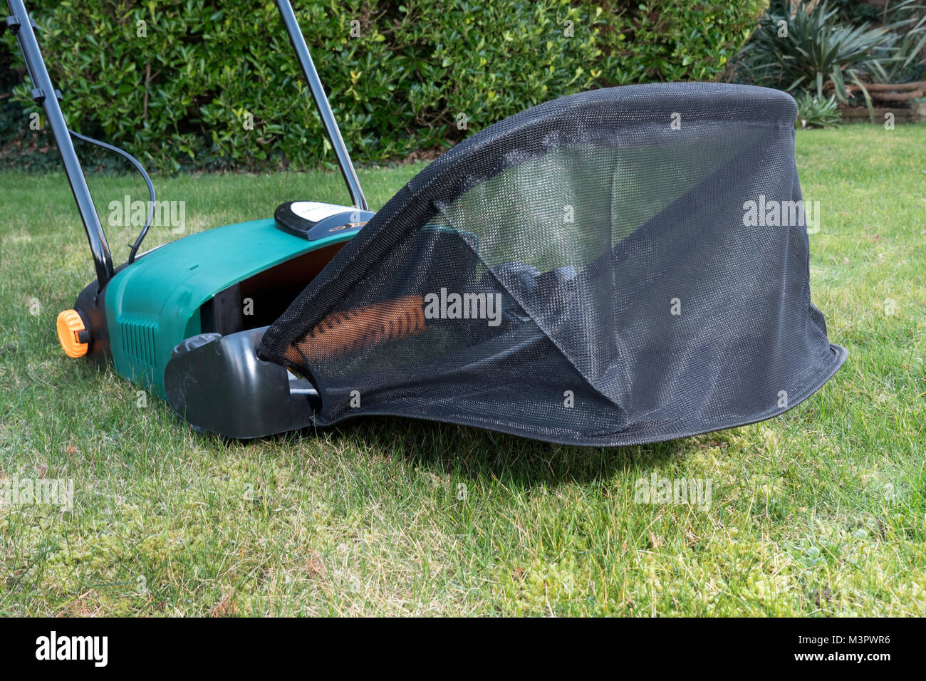 Electric garden lawn raker - Stock Image