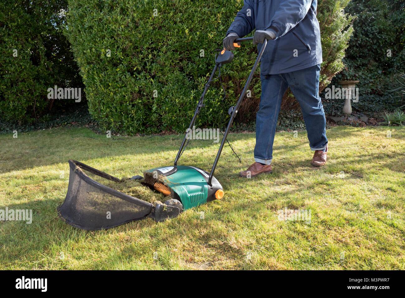 Gardener using an electric garden lawn raker. - Stock Image