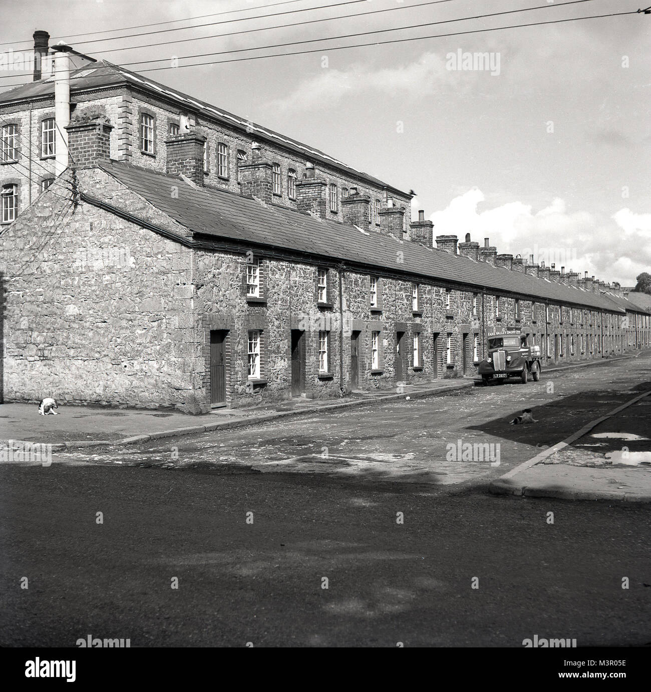 1950s, historical, Northern Ireland, picture shows a row of terraced cottages, workers housing facing an unmade, - Stock Image