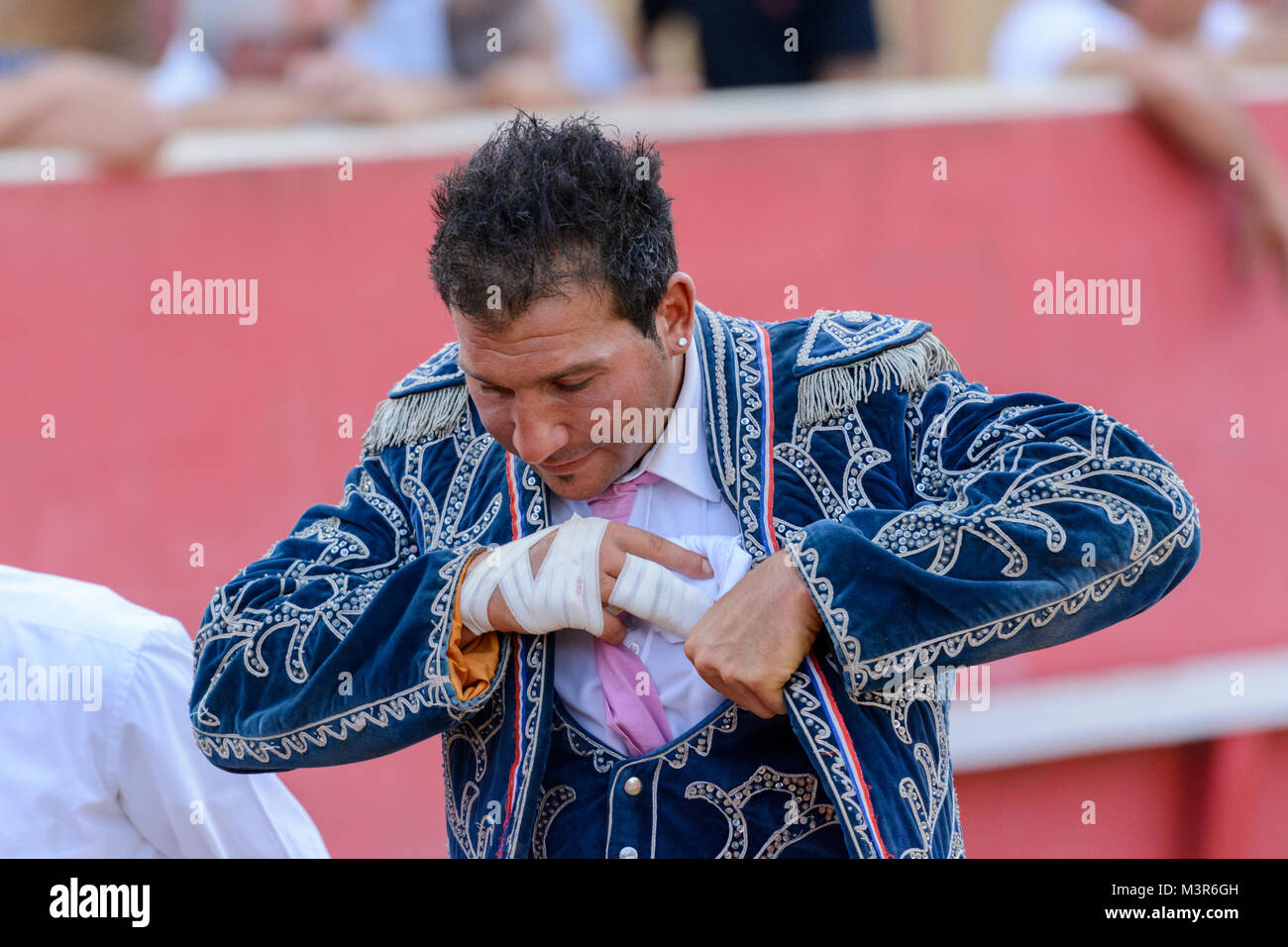 Course Landaise - a humane form of bullfighting involving dodging, leaping and somersaulting over agile horned wild Stock Photo