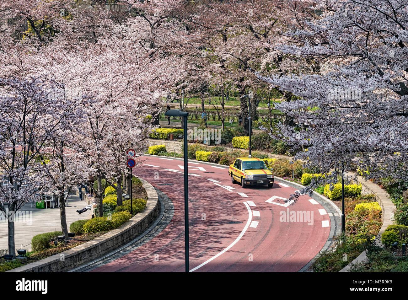 Japan, Honshu island, Kanto, Tokyo, the Midtown Roppongi district in spring. - Stock Image