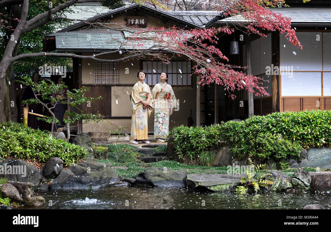 Japan, Honshu island, Kanto, Tokyo, cherry blossom petals blossom falling. - Stock Image