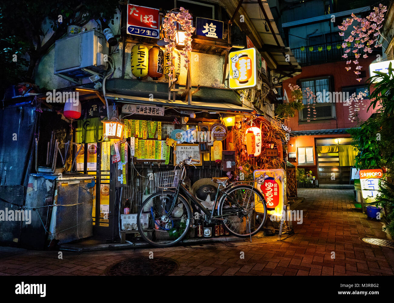 Japan, Honshu island, Kanto, Tokyo, picturesque back alley. - Stock Image