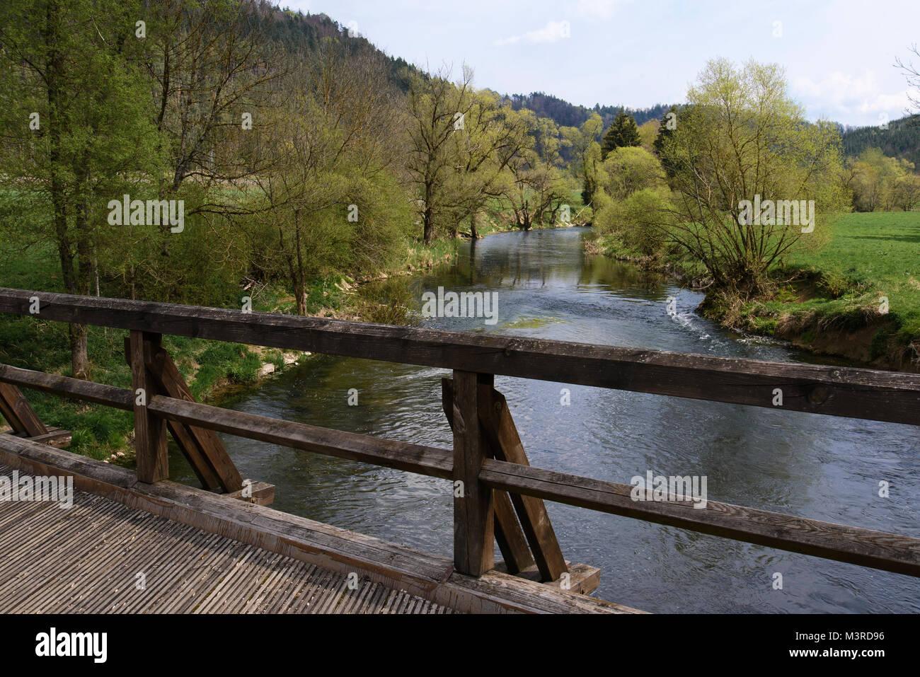Pfahljochbrücke bei Neckarhausen, eine der ältesten erhaltenen Holzbrücken im süddeutschen Raum, - Stock Image