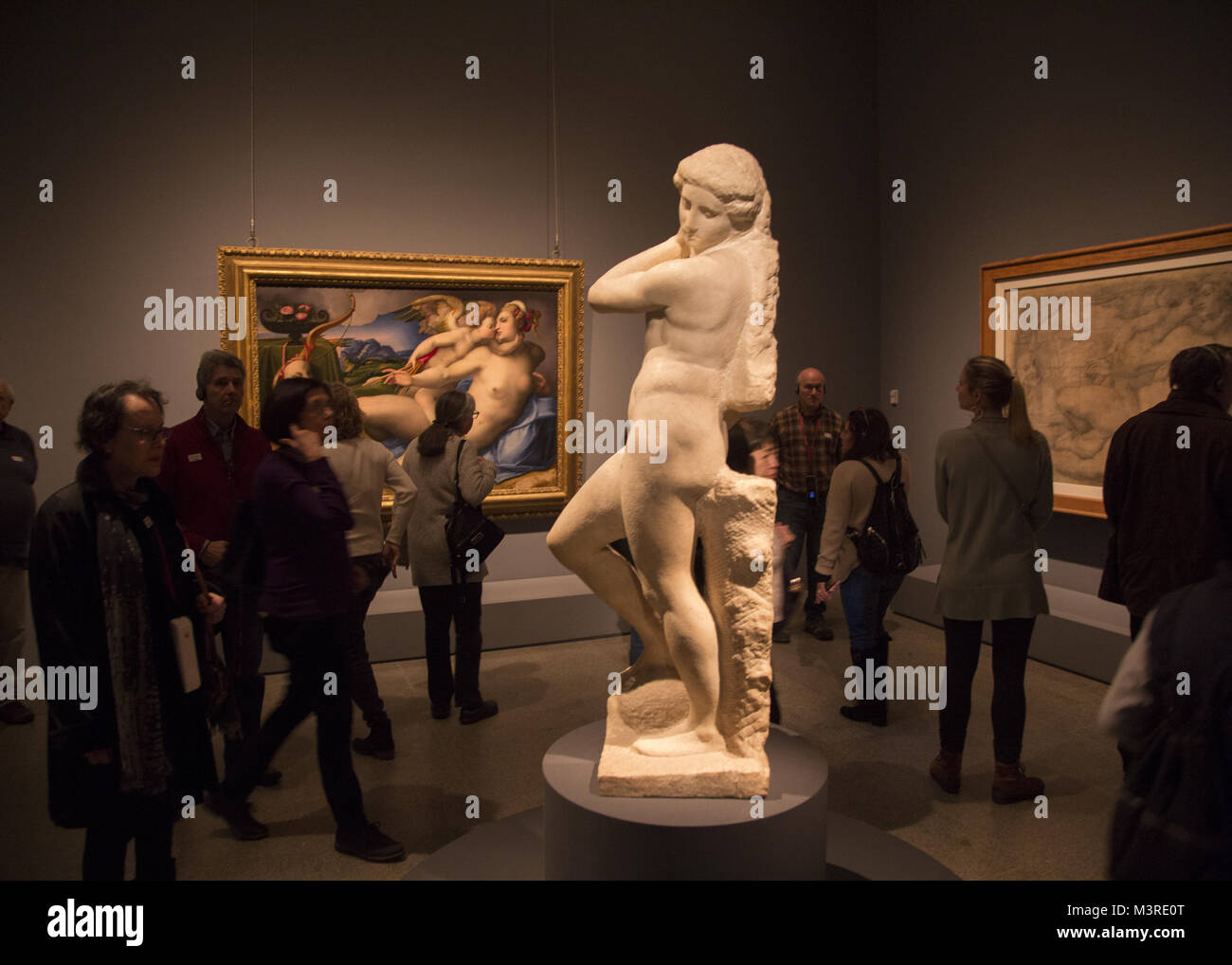 The Apollo, Apollo-David, David-Apollo, or Apollino is a 1.46 m unfinished marble sculpture by Michelangelo that Stock Photo