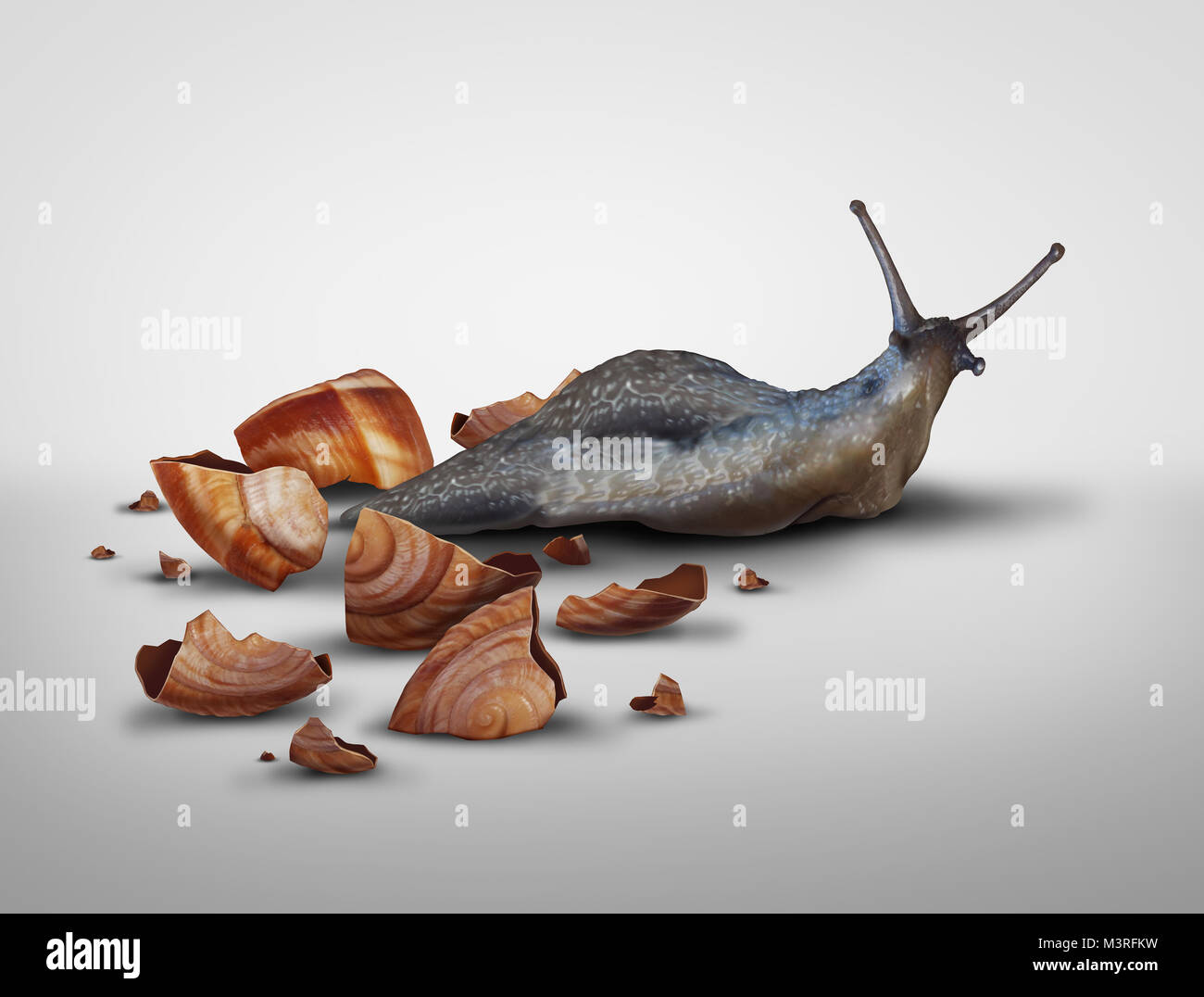 Life in transition and change your image concept or lose baggage concept as a snail that has lost its shell in a - Stock Image