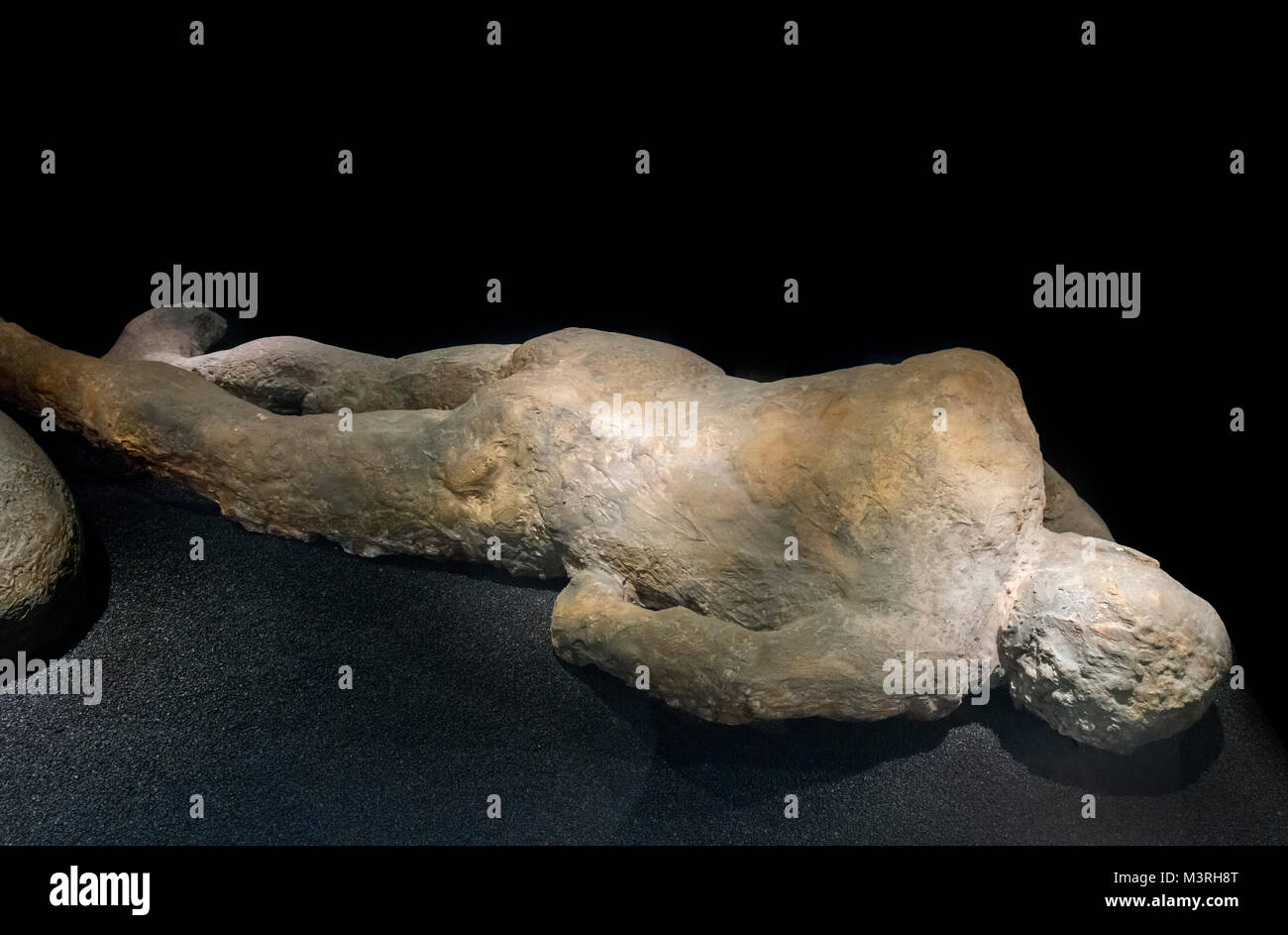 Cast of the body of a victim from Pompeii after the eruption of Mount Vesuvius in AD 79, Natural History Museum, - Stock Image