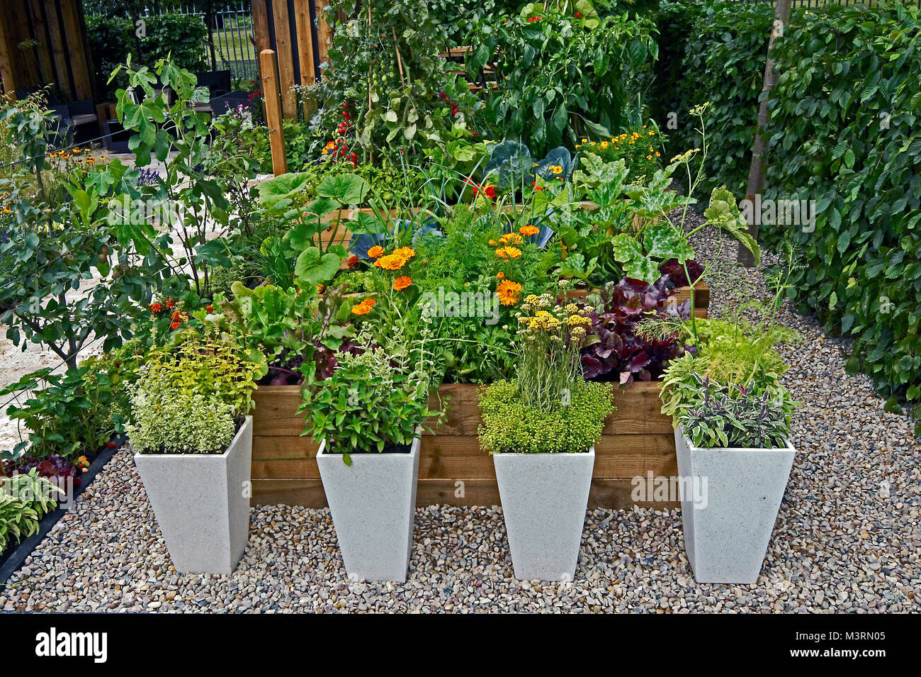 A Decorative Herb And Vegetable Garden With Planted Containers