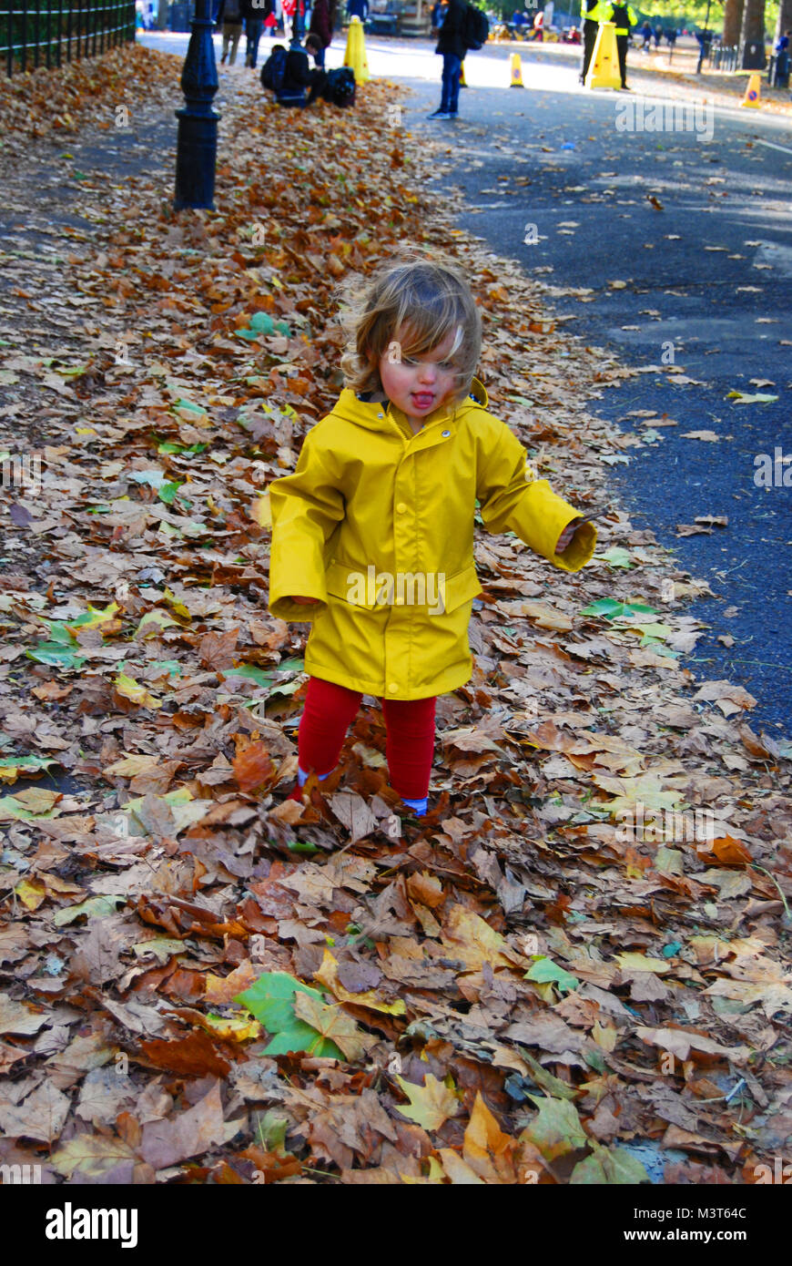 Playing in Leaves Stock Photo