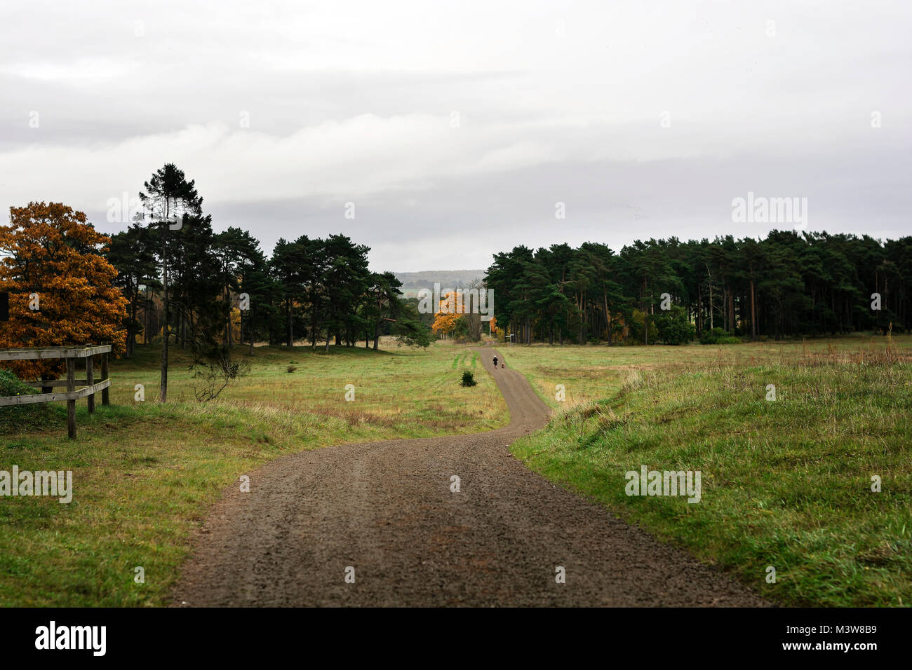 Pathway at Swedish countryside with people walking - Stock Image