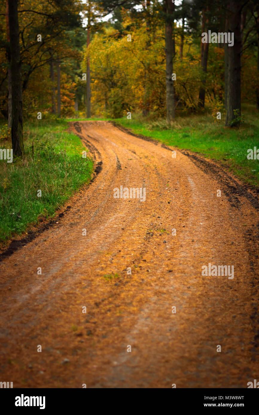 Pathway at Swedish countryside - Stock Image