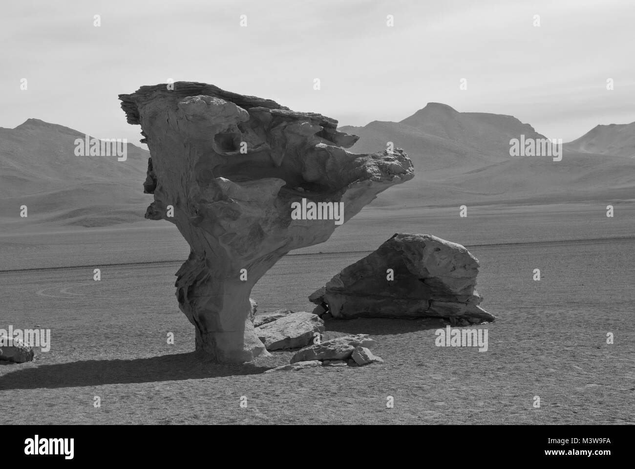 A stone in the shape of a tree in the high-altitude desert of Bolivia Stock Photo