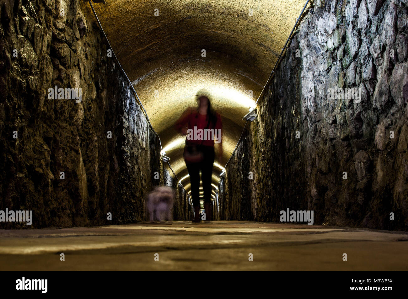 A photo with motion blur of a woman and her dog walking through a dark tunnel with yellow lights - Stock Image