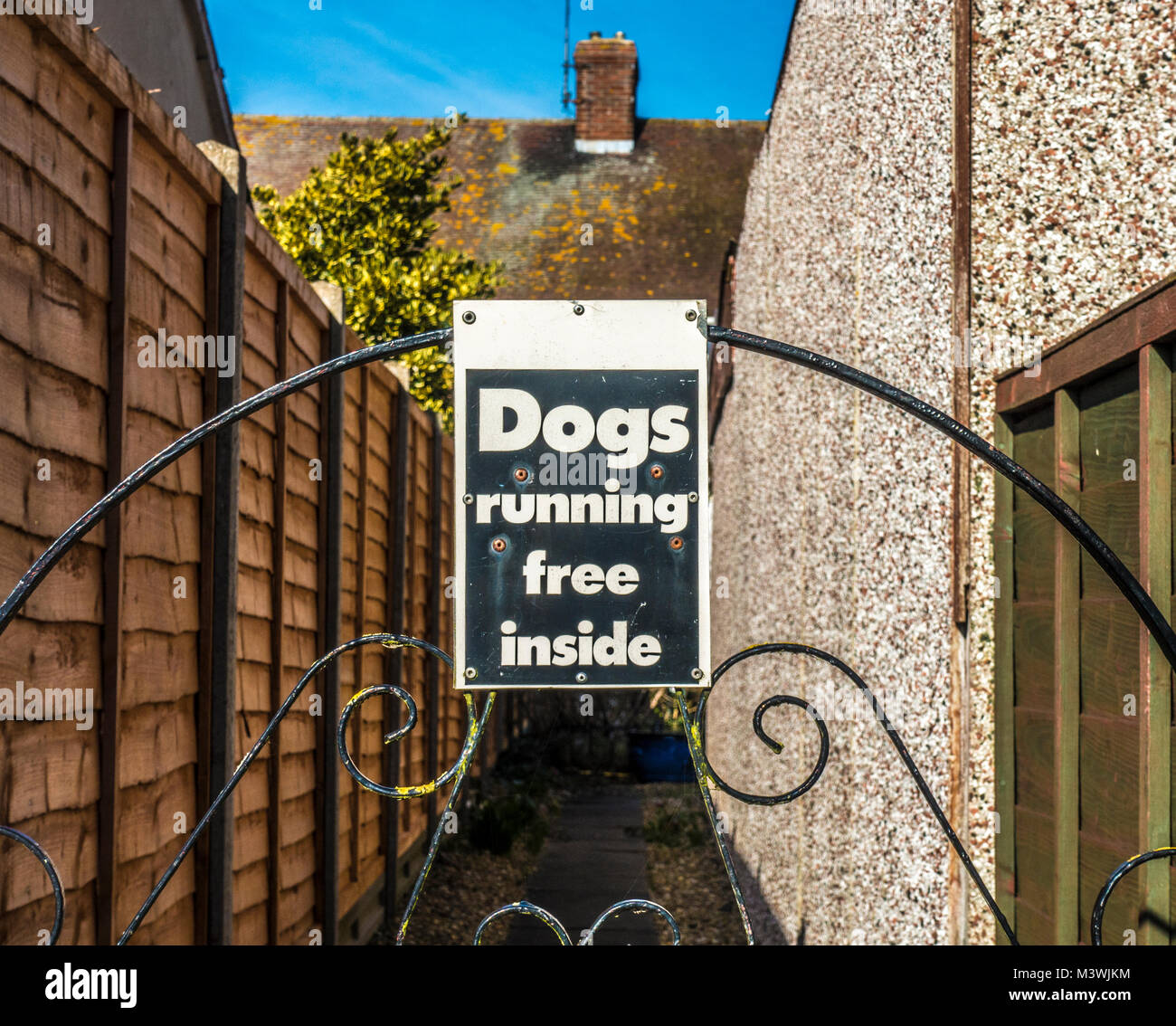 """Warning sign / notice at the rear of a house, prominently displayed on an ornate metal gate, """"Dogs running free - Stock Image"""