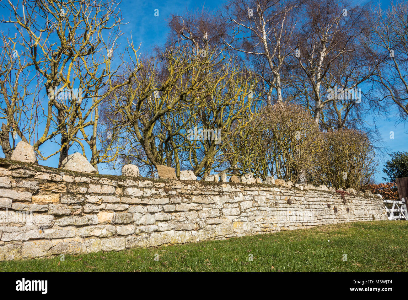 An ancient stone wall, ending with a traditional wooden bar gate, with bare trees in winter, against a clear blue - Stock Image