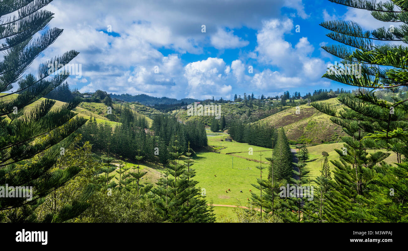 Norfolk Island, Australian external territory, view of Arthur's Vale, where the first agricultural effords of - Stock Image