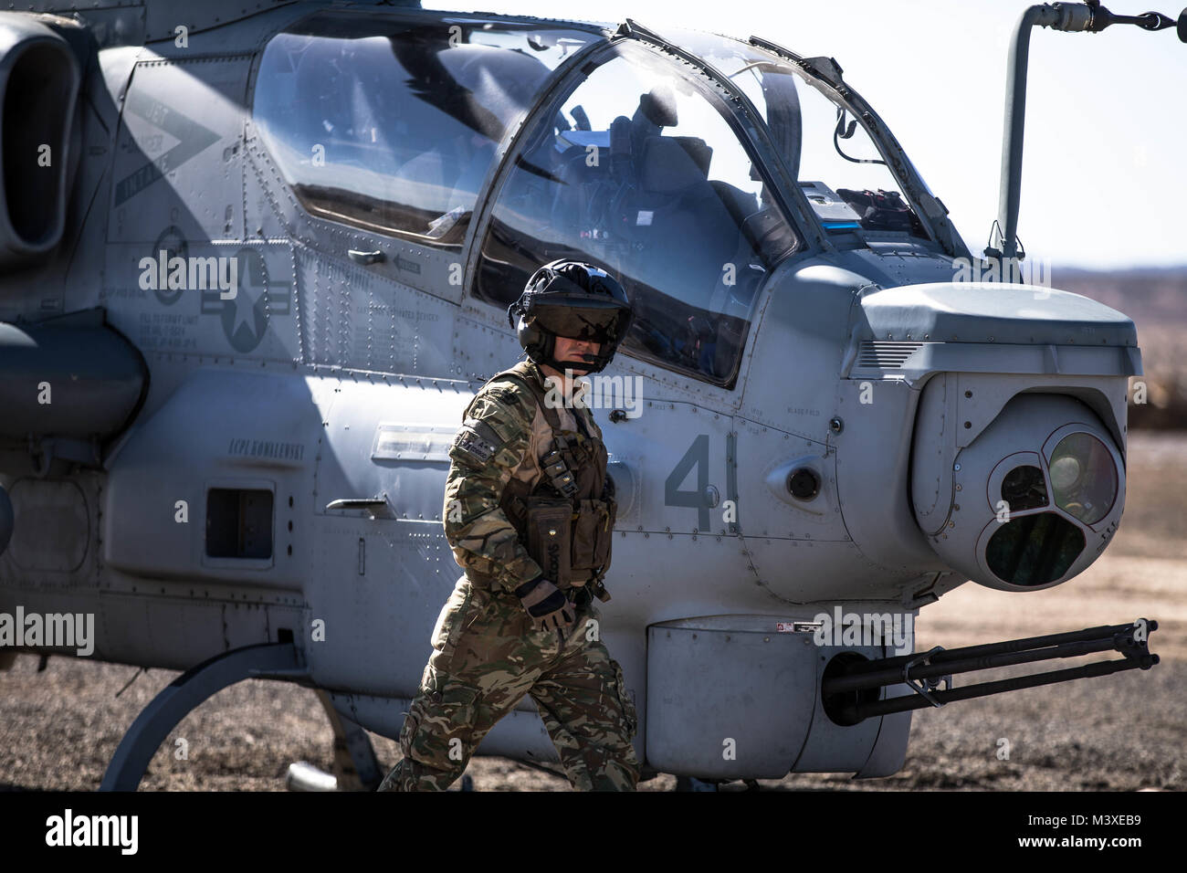 A Royal Marines Commando walks toward a Bell AH-1Z Viper at a Forward Arming and Refueling Point at Marine Corps Stock Photo
