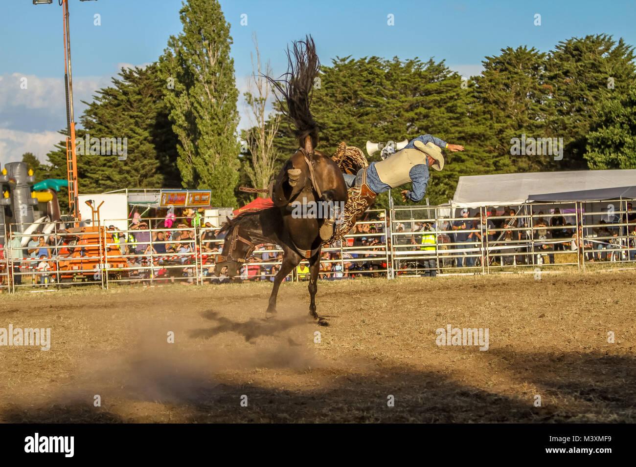 Ballarat International Rodeo - Ballarat Polocrosse Grounds ,Victoria Australia Stock Photo