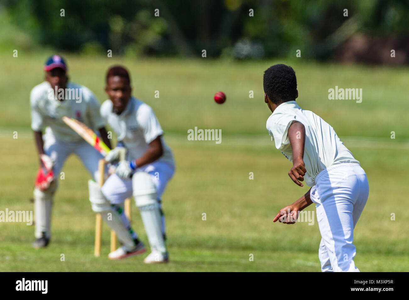 Cricket game action closeup unidentified abstract bowler batsman wicket keeper. - Stock Image