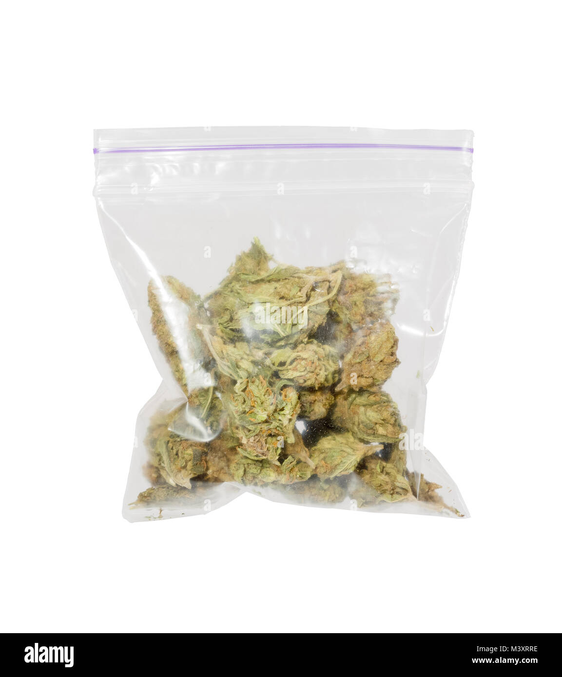 Big plastic bag of medicinal cannabis marijuana. - Stock Image