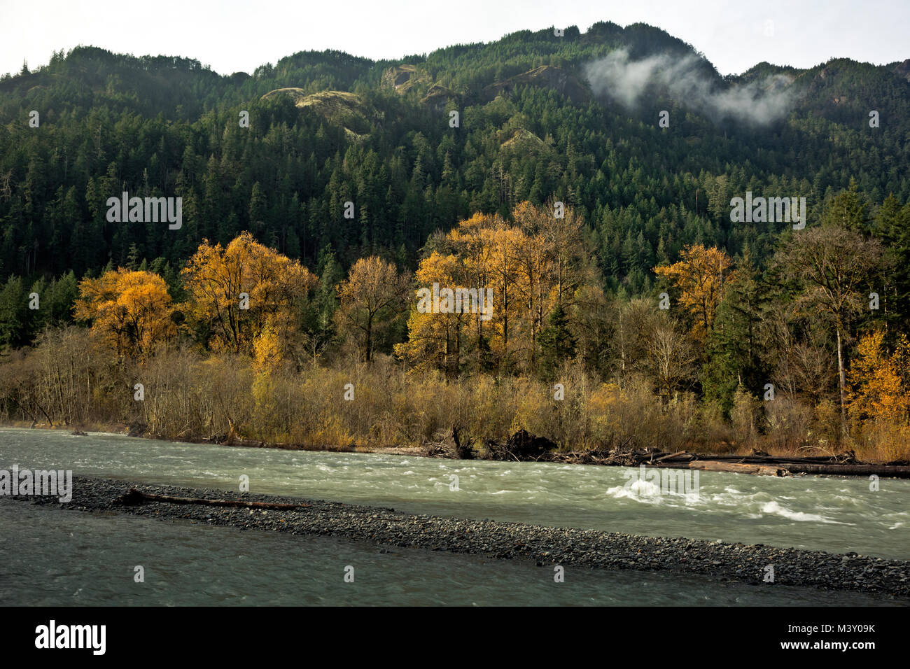 WA13370-00...WASHINGTON - Elwha River running wild and free, looking just like a river should. - Stock Image
