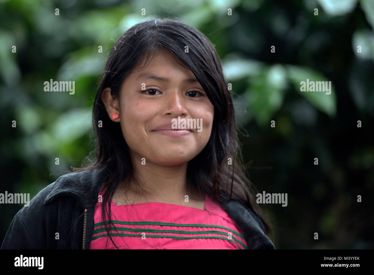 A Ngäbe-Bugle teenaged girl working on a coffee plantation in Boquete, Chiriquí Province, Panama. - Stock Image