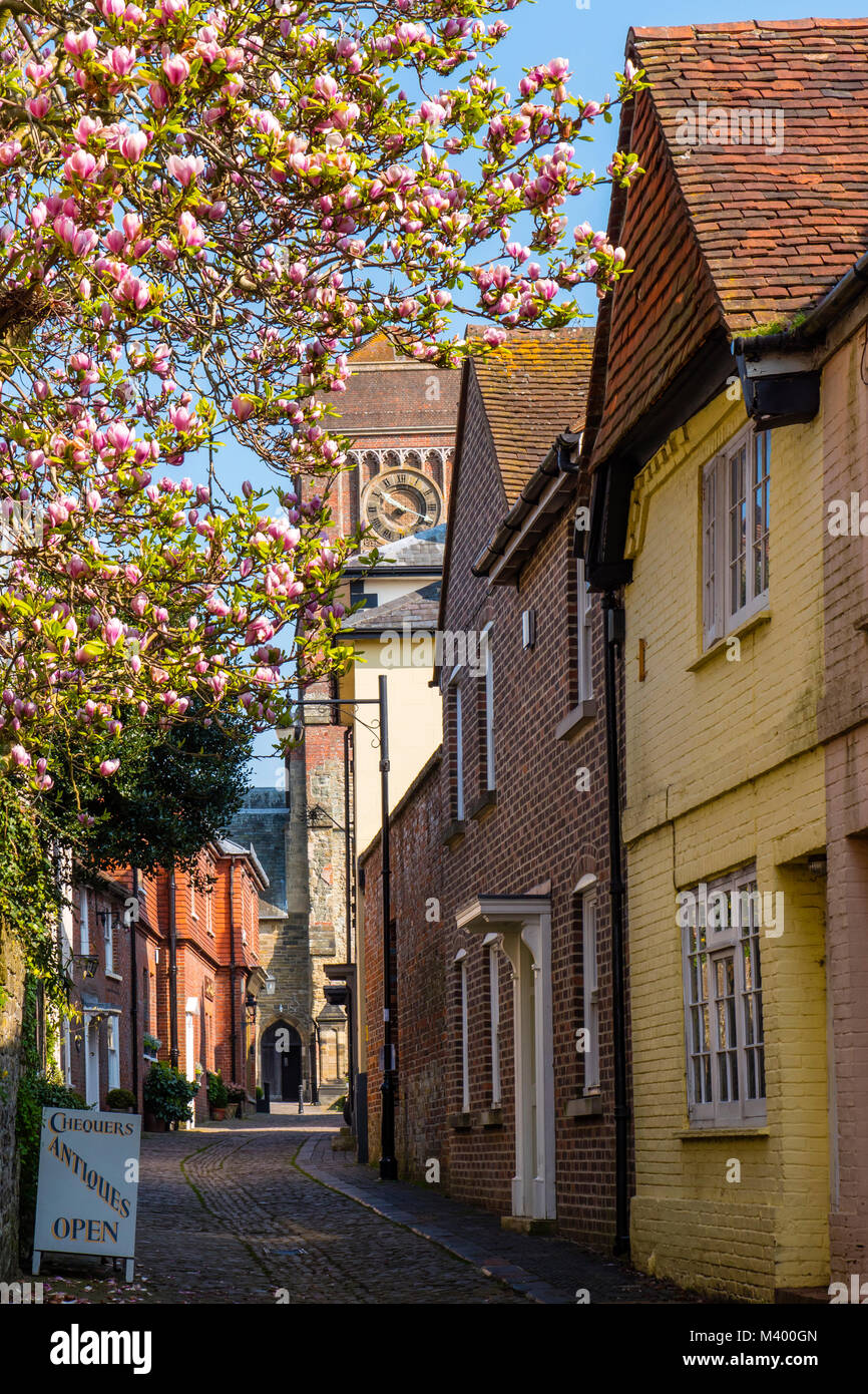 Lombard Street Petworth West Sussex England - Stock Image