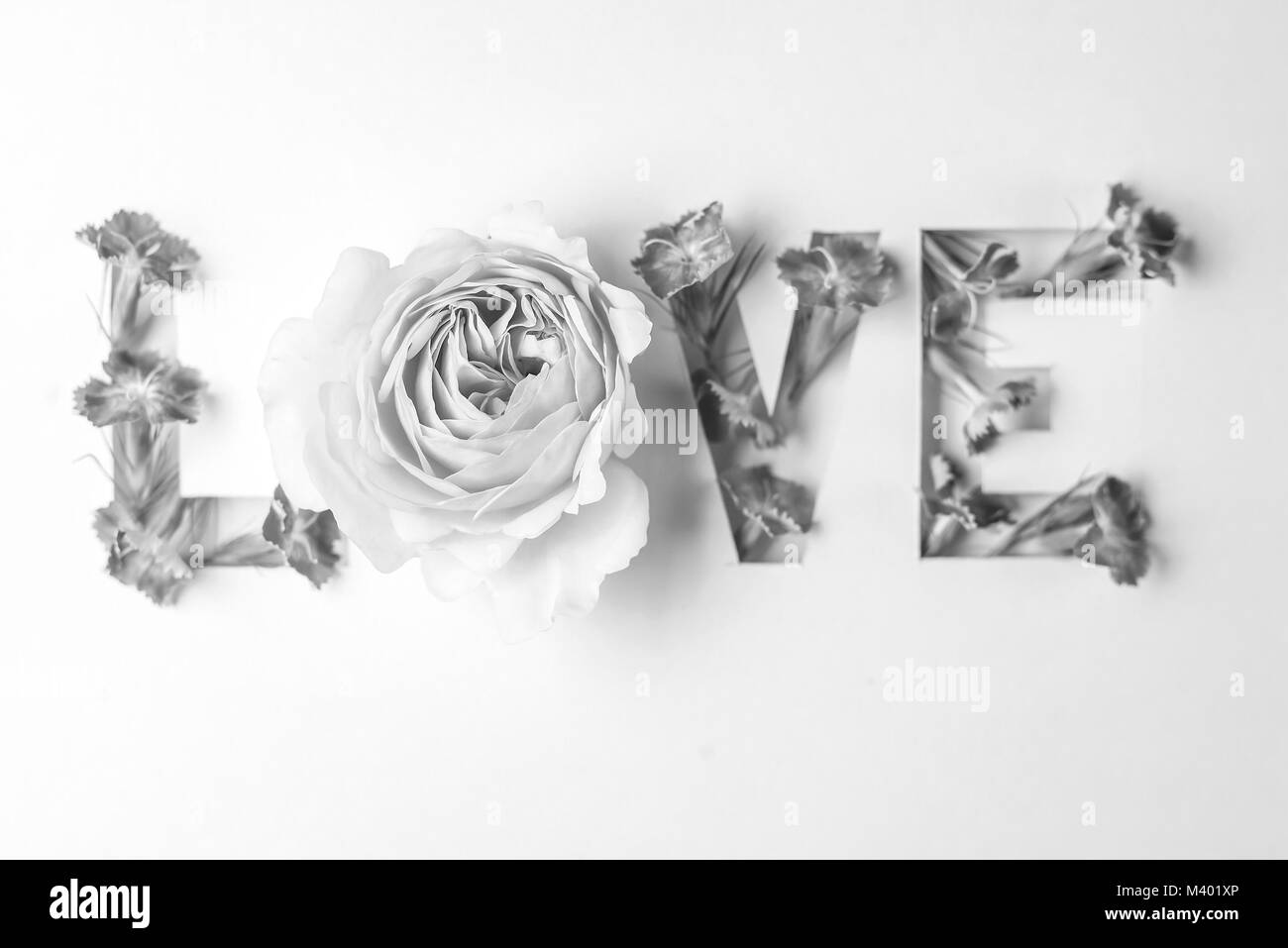 Love inscription with pink flowers  - Stock Image