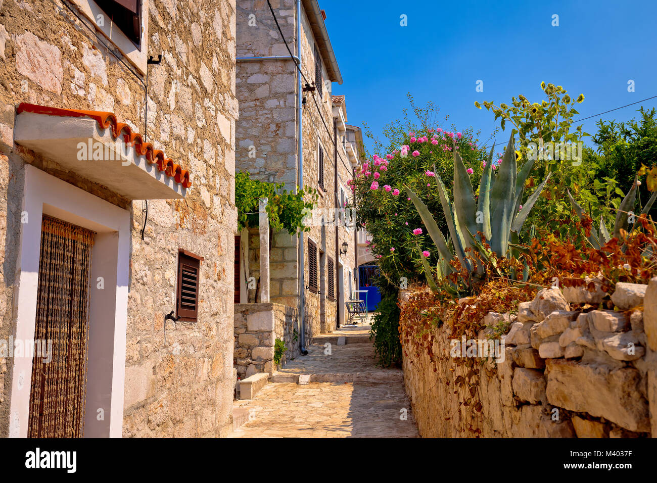 Colorful mediterranean stone street of Prvic island, Sibenik archipelago of Croatia - Stock Image