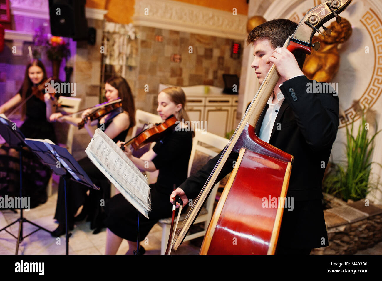 String quartet playing instruments in the restaurant on the wedding party. - Stock Image
