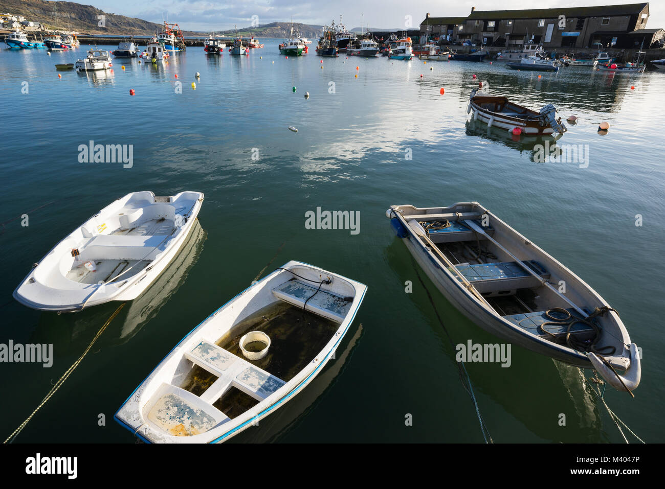 Lyme regis harbour in Dorset, wideangle. - Stock Image