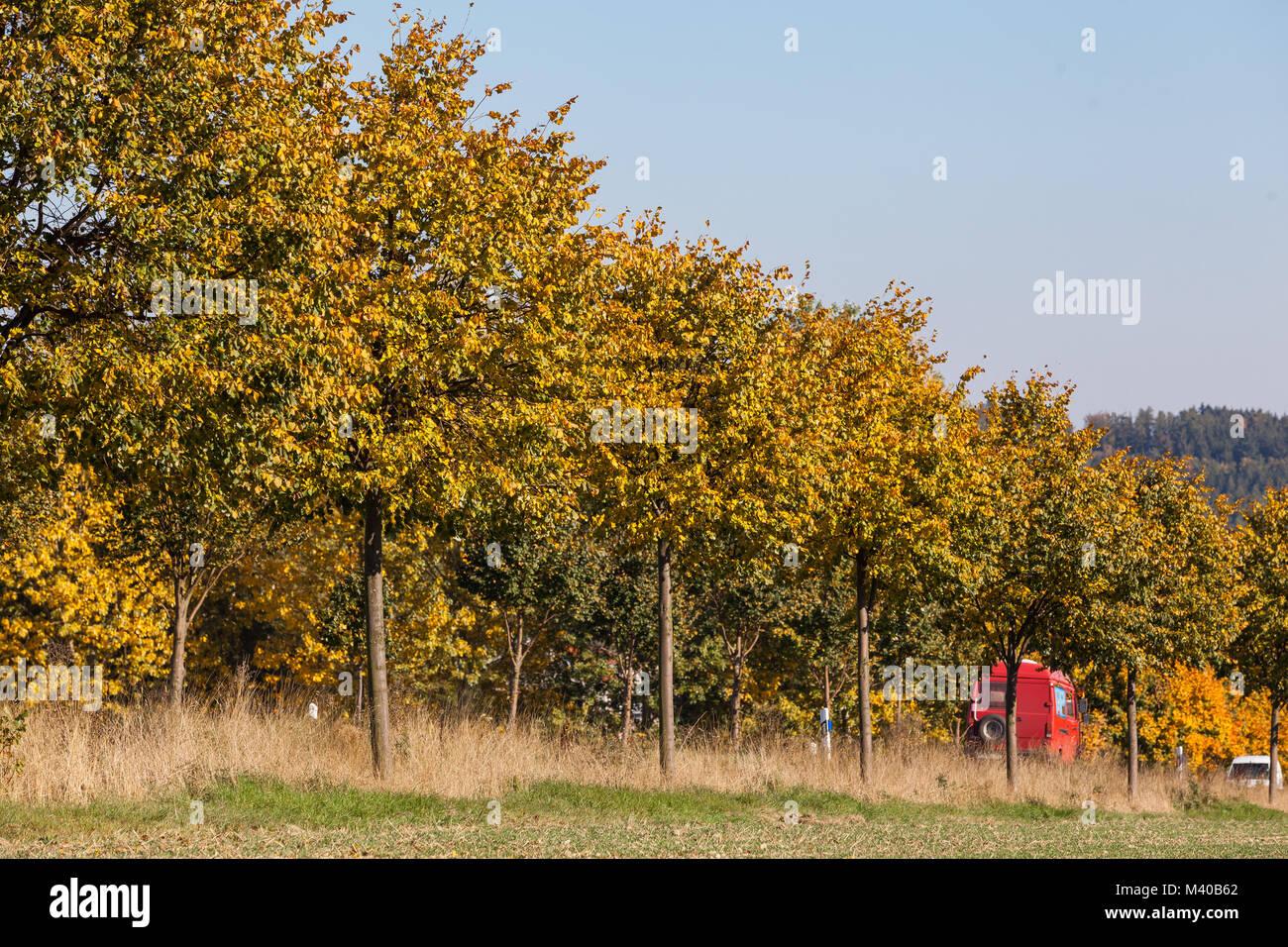 Straßenverkehr im Herbst - Stock Image