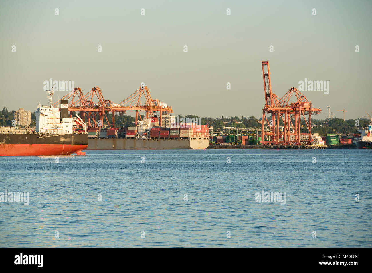 Forex cargo vancouver bc